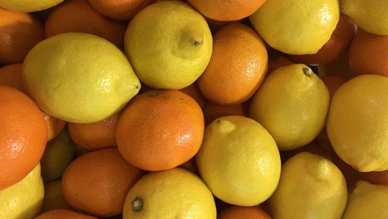 citricos-naranjas-y-limones