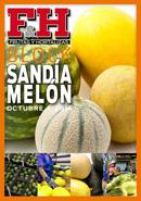 Block sandía y melón 2014