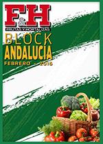 Block Andalucía 2016