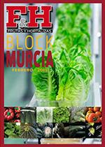 Block Murcia 2015