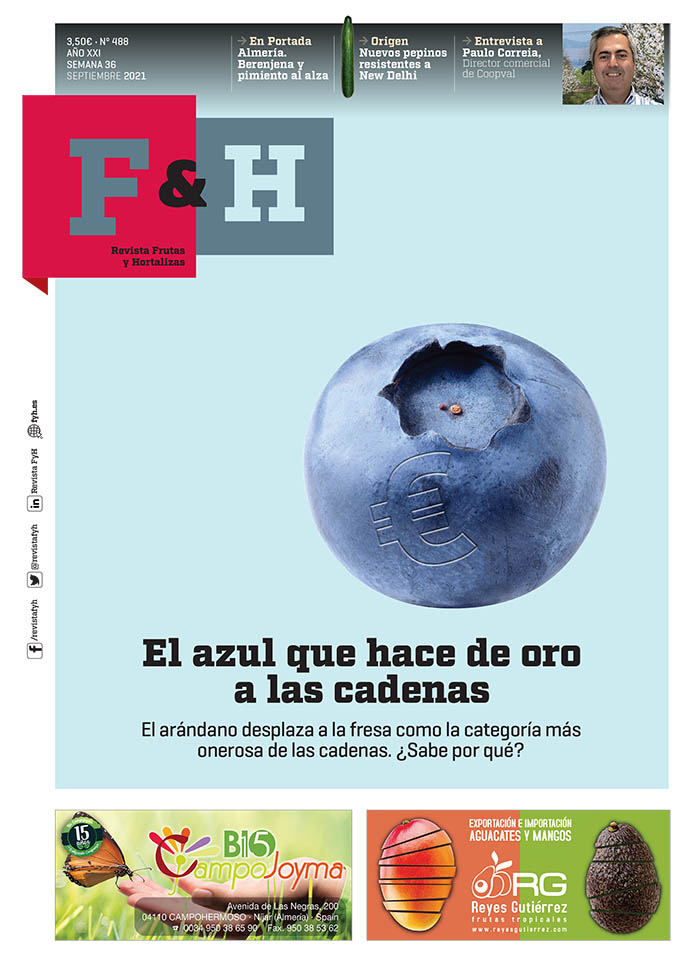 FyH-Revista