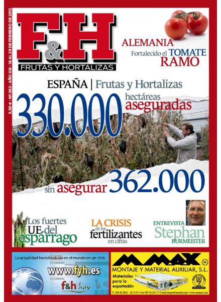 Revista 262