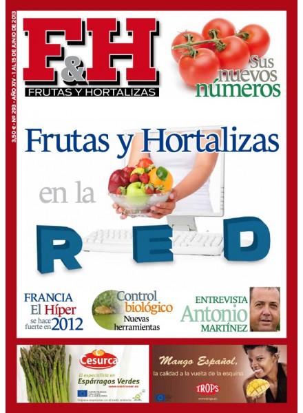 Revista 293
