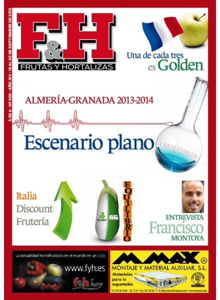 Revista 300