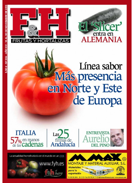 Revista 304