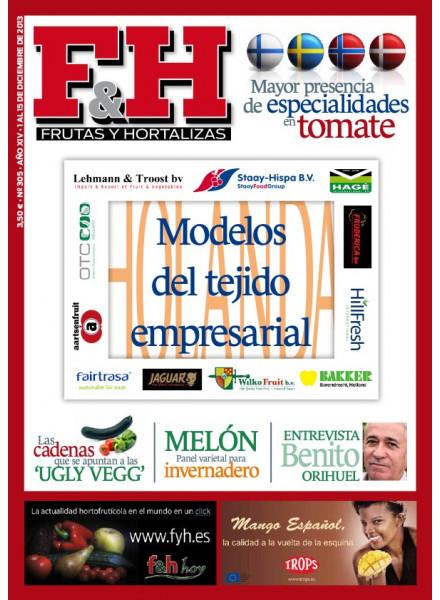 Revista 305