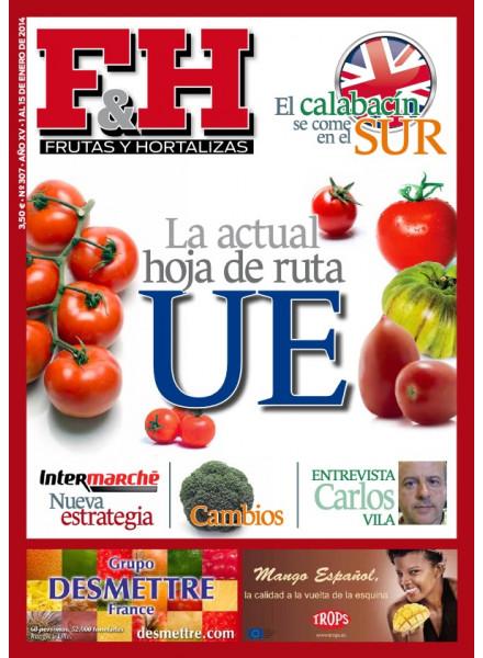 Revista 307