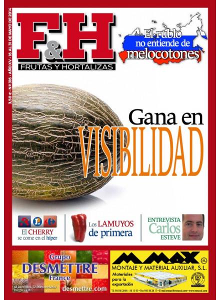 Revista 316