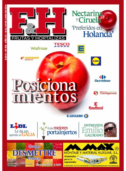 Revista 318