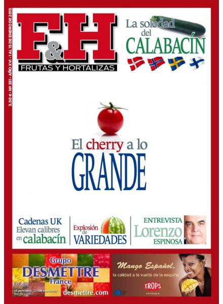 Revista 331