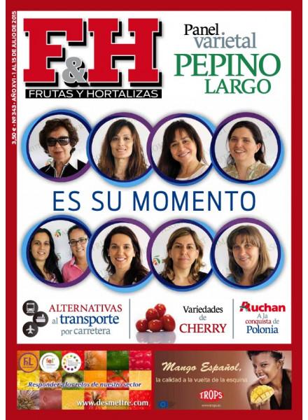 Revista 343