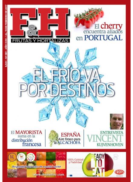 Revista 381