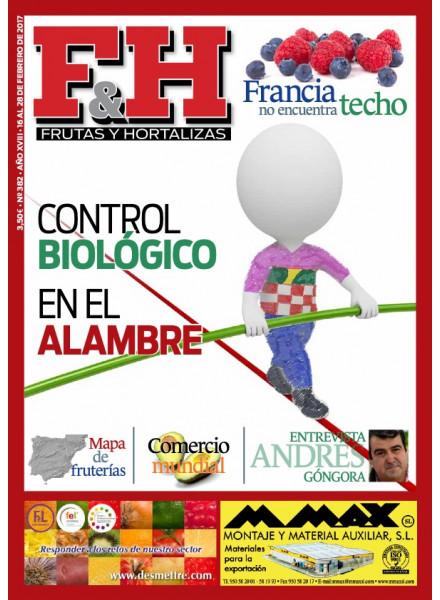 Revista 382