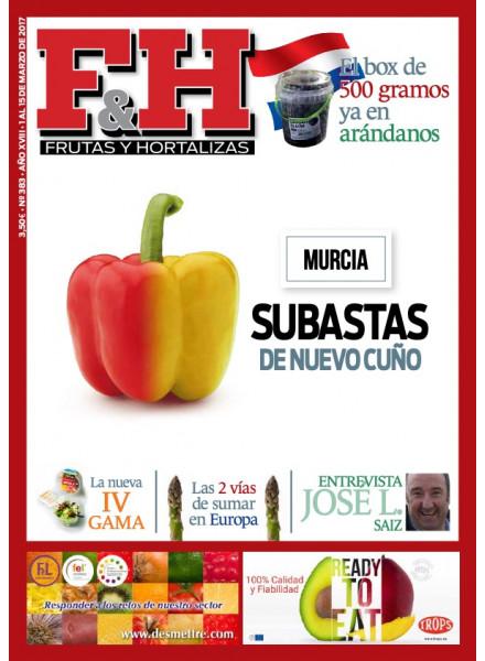 Revista 383