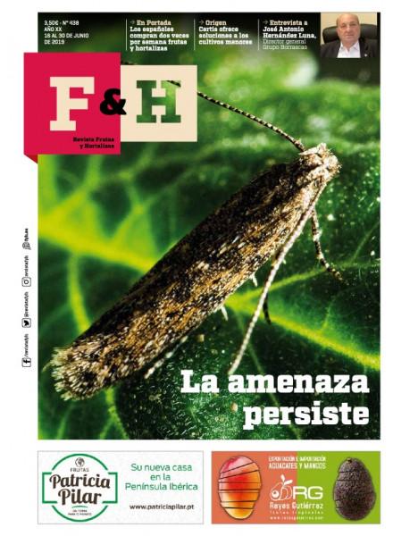 Revista 438