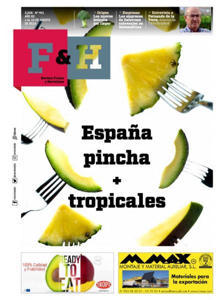 Revista 441
