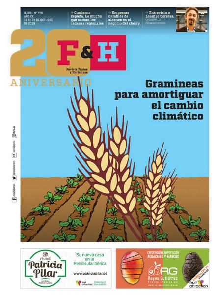 Revista 446