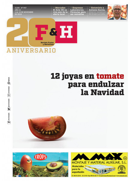 Revista 447